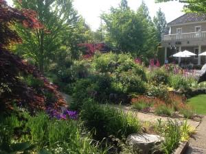 Natural Healing Garden